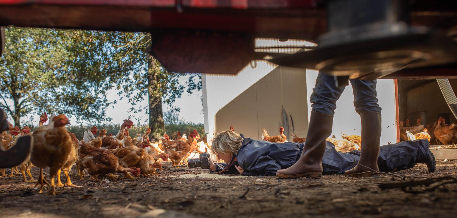 photo de Carole embid lors d'un reportage photo dans une ferme des landes